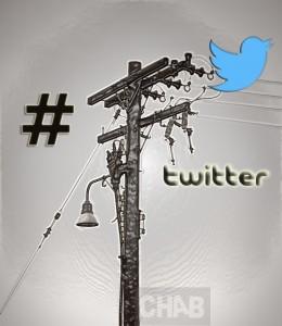 Twitter Pionnier pour les réseaux sociaux.