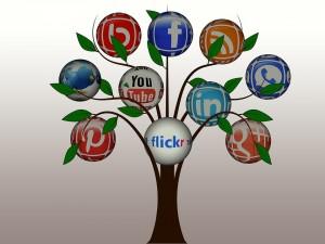 Réseaux sociaux : décryptage et profils...
